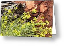 Flower Wood And Rock Greeting Card