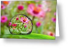 Flowerdrop Greeting Card