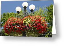 Flowered Lamppost Greeting Card