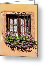 Flowered Window # II Greeting Card
