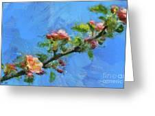 Flowering Apple Branch Greeting Card