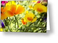 Flowering Garden Greeting Card