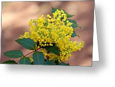 Flowering Plant 032514a Greeting Card