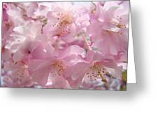 Flowering Tree Art Prints Spring Pink Blossom Flowers Baslee Greeting Card