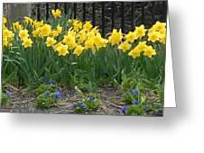 Flowers 37 Greeting Card