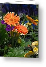 Flowers 730 Greeting Card