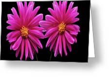 Flowers 74 Greeting Card