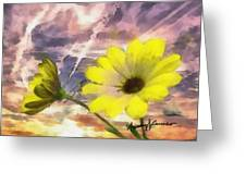 Flowers Against A Busy Sky Greeting Card