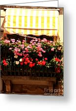 Flowers And Awning In Venice Greeting Card