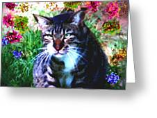 Flowers And Cat Greeting Card