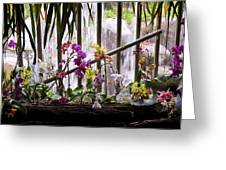 Flowers And Waterfall Greeting Card