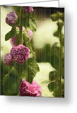 Flowers Behind The Screen Greeting Card