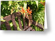 Flowers' Bench Greeting Card