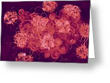 Flowers, Buttons And Ribbons -shades Of Burbundy Rose Greeting Card