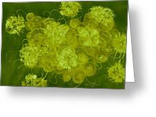 Flowers, Buttons And Ribbons -shades Of Chartreuse Greeting Card