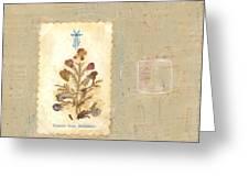 Flowers From Bethlehem  Greeting Card