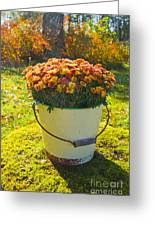 Flowers In A Bucket Greeting Card