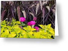 Flowers In Contrast Greeting Card