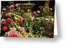 Flowers In Garden In Venice Greeting Card