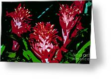 Flowers In Red Greeting Card