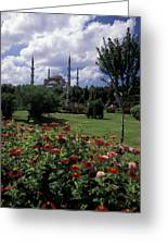 Flowers In Sultanahmet Square Greeting Card