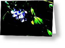 Flowers In The Dark Greeting Card