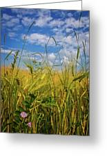 Flowers In The Wheat Greeting Card