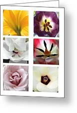 Flowers In The Yard Greeting Card