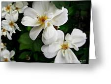 Flowers Of The Moon Greeting Card
