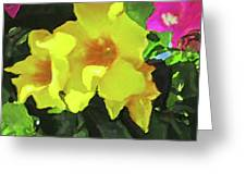 Flowers On Deck Greeting Card