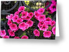 Flowers On Iron Grate In Venice Greeting Card