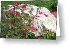 Flowers On The Rocks Greeting Card