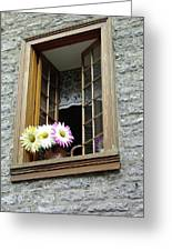 Flowers On The Sill Greeting Card