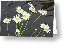 Flowers On The Water Greeting Card