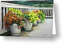 Flowers Pots On Deck Greeting Card