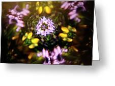 Flowers Thru Kaleidiscope Greeting Card