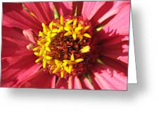 Flowers With In The Flower Greeting Card