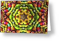 Flowerscales 62 Greeting Card