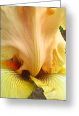 Flowerscape Yellow Iris One Greeting Card
