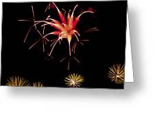 Flowerworks #10 Greeting Card