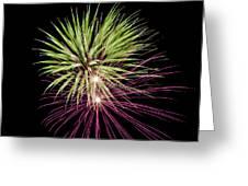 Flowerworks #14 Greeting Card