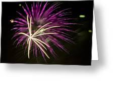 Flowerworks #15 Greeting Card