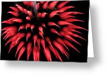 Flowerworks #31 Greeting Card