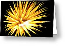 Flowerworks #34 Greeting Card