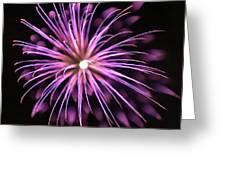 Flowerworks #36 Greeting Card