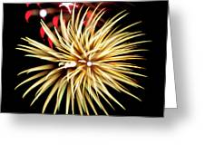 Flowerworks #40 Greeting Card