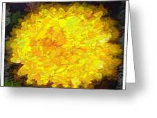 Flowery Acceptance In Abstract Greeting Card