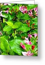 Flowery Flope Greeting Card