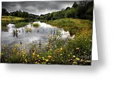 Flowery Lake Greeting Card by Carlos Caetano