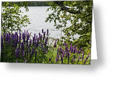 Flowing Beauty Greeting Card
